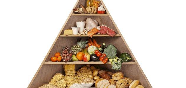 المغذيات الكبيرة للإنسان والحيوان والنبات