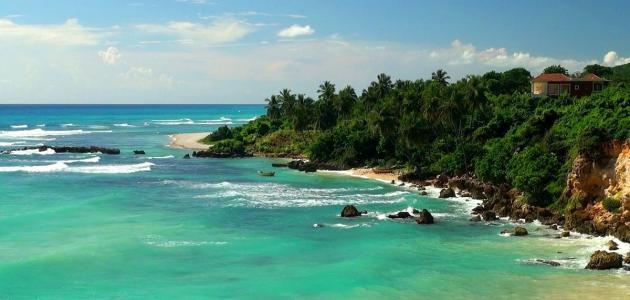 ترتيب محيطات العالم من حيث العمق، وكيف أثر العمق على تنوع الحياة فيها