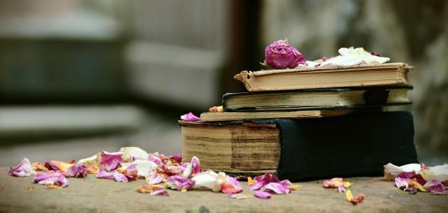 الخيال في النقد الأدبي