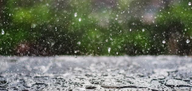 معدل الهطول السنوي للأمطار وأهم المعلومات العلمية عنه